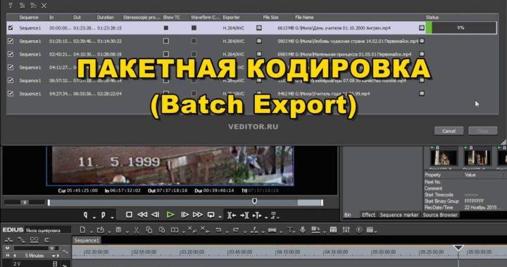 Пакетная кодировка (Batch Export) в Edius