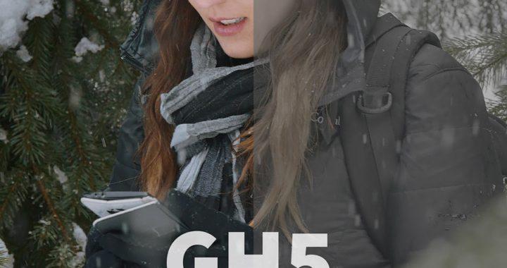 Neumann Films GH5 LUTs