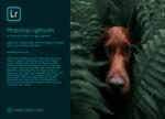 Adobe Photoshop Lightroom 2020 3.1.0Win